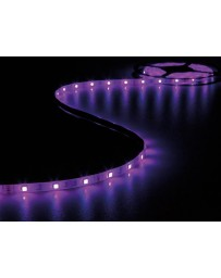 LED-STRIP 150 LEDs - 5 m - 12 Vdc